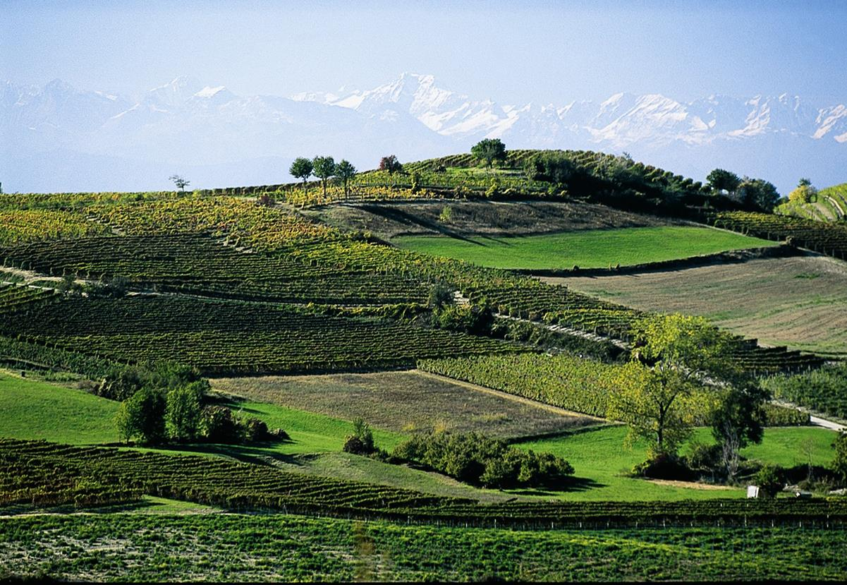 Piedmont italy travel guide places to visit in piedmont for Planimetrie del paese di collina