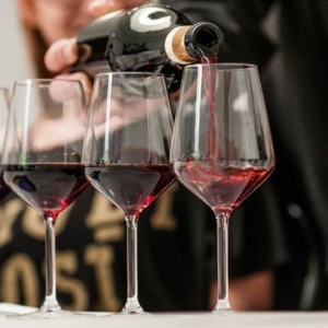 Red wines of Piemonte - by Tu Langhe Roero