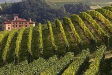 Barolo, Piedmont - Le Langhe