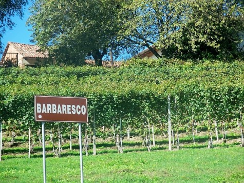 Piedmont red wines, Barbaresco - a sign with vineyards in the background leading to the town of Barbaresco