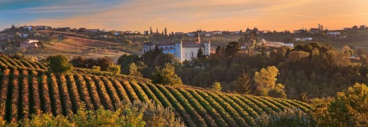 Top 10 Castles in Monferrato, Piedmont - view of castle and rolling hills with vineyards