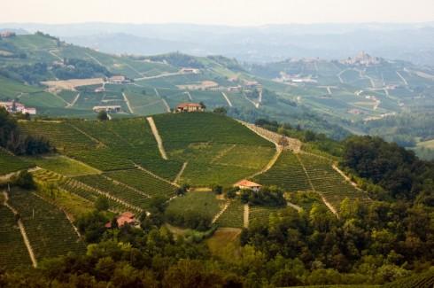 Monferrato hills Cocconato d'Asti - Monferrato is a Piedmont wine region