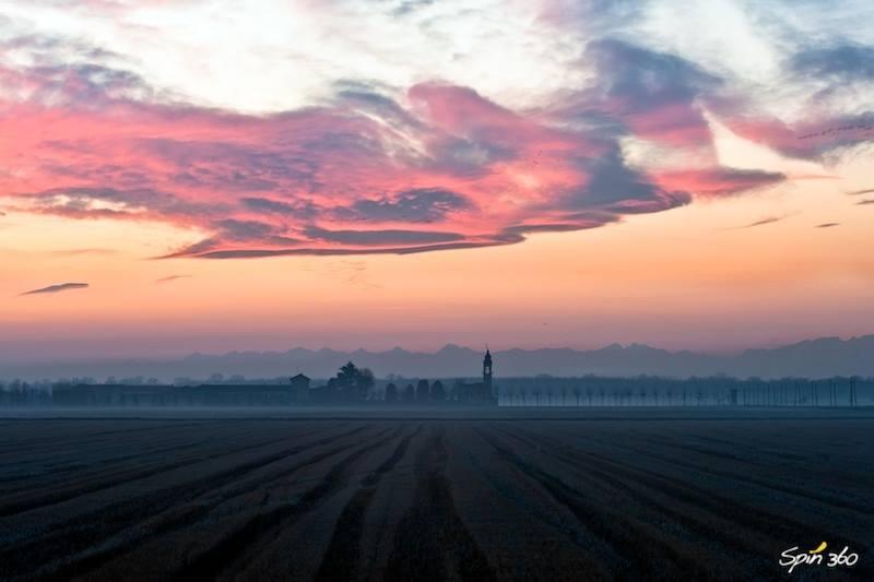 Vercelli rice field in sunset