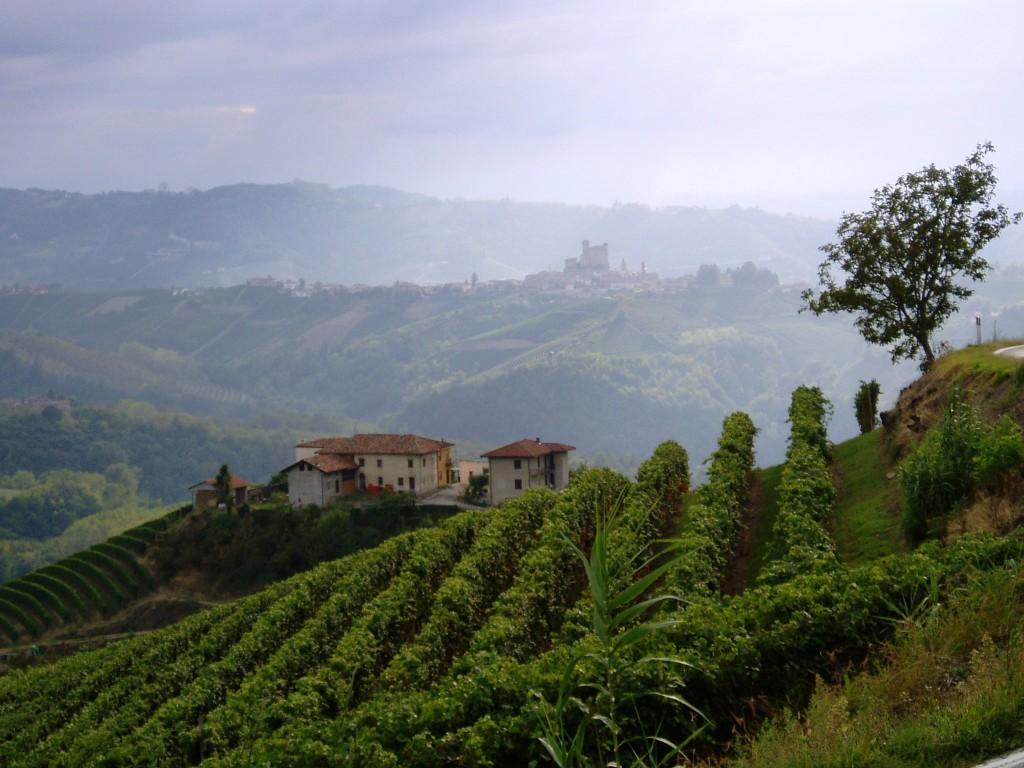 View towards Serralunga castle in the alta langa