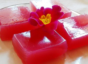 Pomegranate jelly squares
