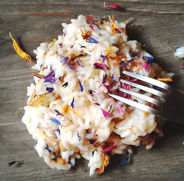 Risotto with wild flowers