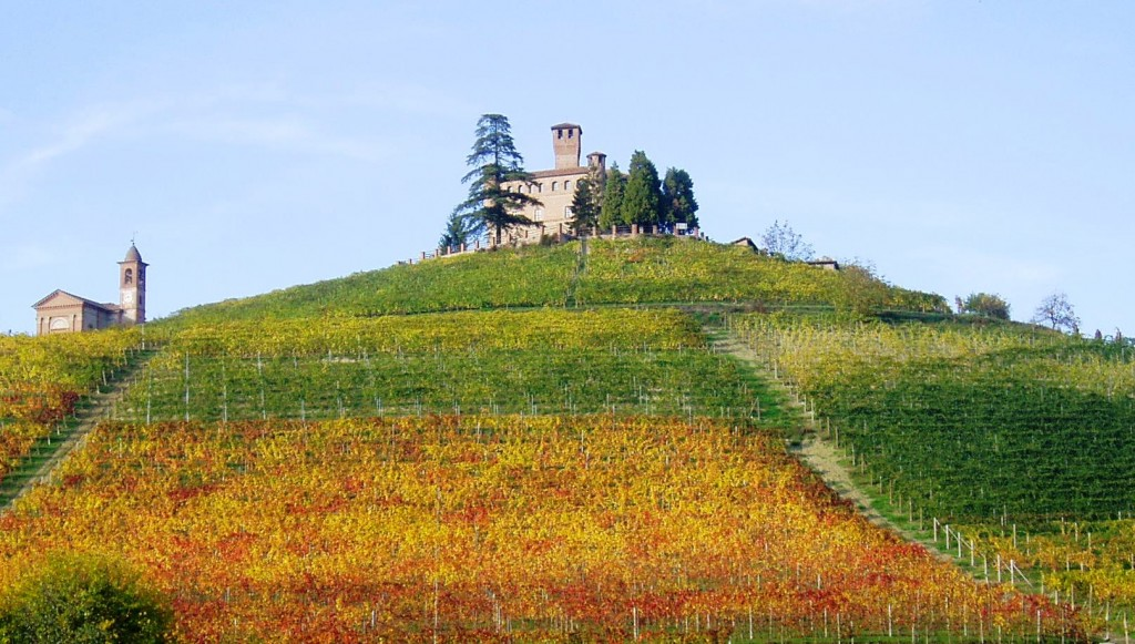 Alba in Piedmont during the Fall with colorful vineyards