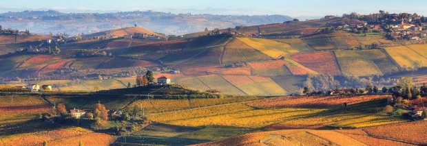 Piedmont's Autumn Landscape with vineyards in fall colors