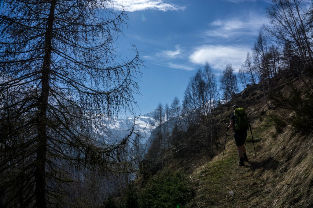Gran Paradiso girl trekking on mountain looking at the valley