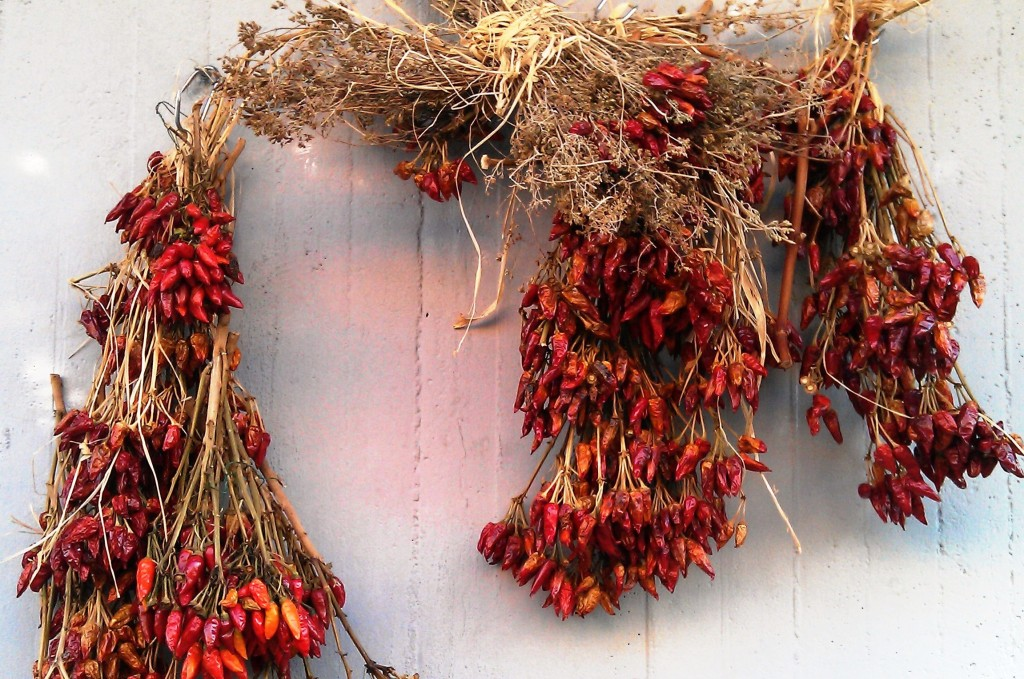 Dried chillies hanging on wall