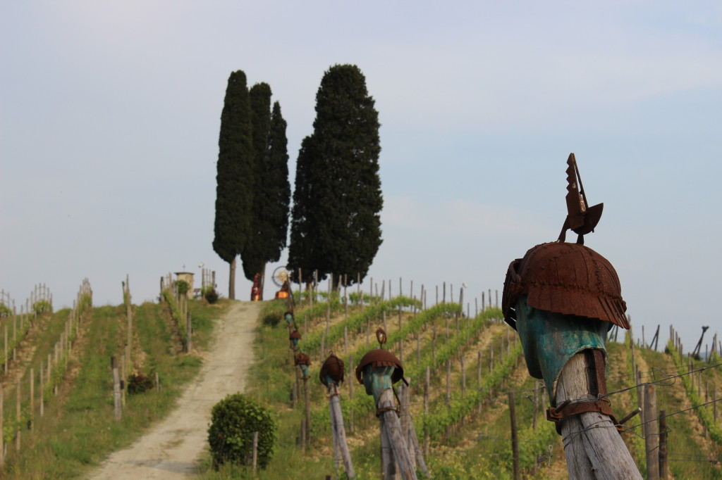 asti-vineyards-with-cypress-trees