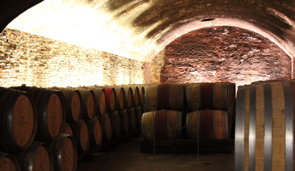 asti wine cellar with barrells