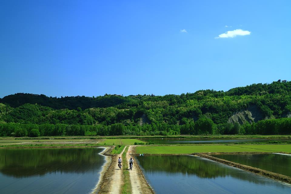 Monferrato Parks - Aree Protette Po Vercellese-Alessandrino cycling route