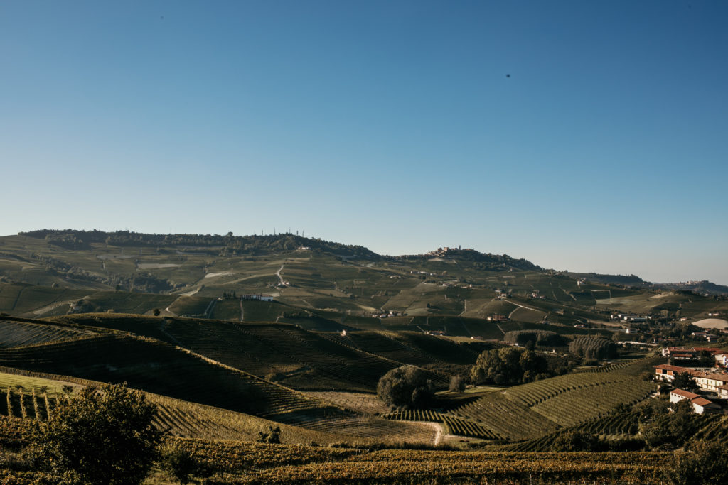 Barolo wine tasting featured here a photo of the Barolo landscape with green rolling hills