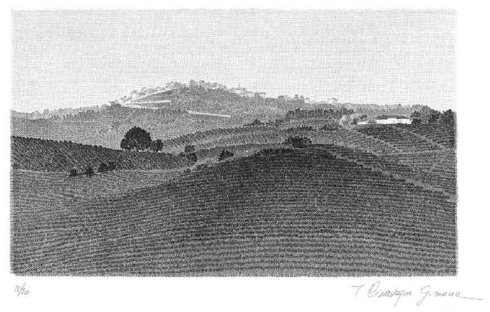 La Morra Artist - Acquaforte artwork showing vineyards and countryside landscape