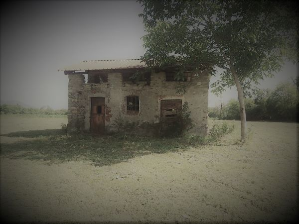 Rustic cottage in need of restoration in a country field